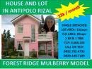Antipolo House and Lot Mulberry Model Forest Ridge Subdivision